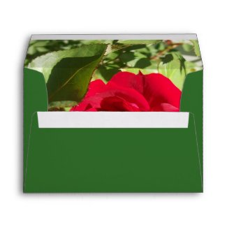 Red Rose Envelope envelope