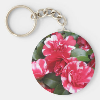 Red & White Striped Roses Key Chains