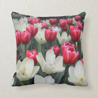 Find Dutch Decorative Pillows On Houzz