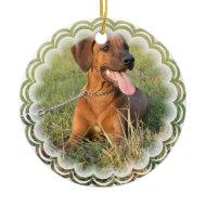 Rhodesian Ridgeback Dog Ornament ornament
