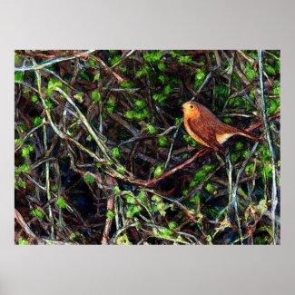 Robin in a hedge print