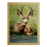 Rocky Mountain National Park Deer Vintage Poster