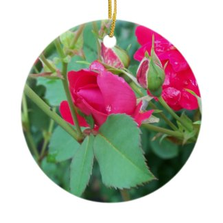 Rose Bud with Water Droplet Ornament ornament