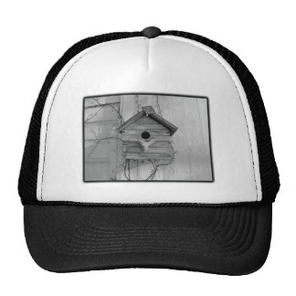 Rustic Birdhouse Mesh Hats
