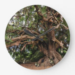 Rustic Old Olive Tree Large Clock