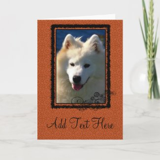 Samoyed Dog Photograph card