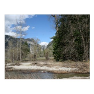 Scenic Merced River in Yosemite Park Postcard