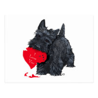 Scottish Terrier Valentine Postcard