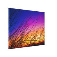 Sea Oats at Sunrise on Daytona Beach III Gallery Wrap Canvas