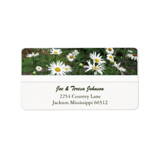 Shasta Daisies Address Labels