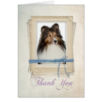 Sheltie Thank You Card