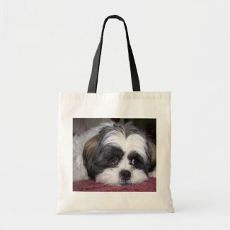 Shih Tzu Dog Photograph Bags
