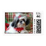 shih-tzu dog stamps