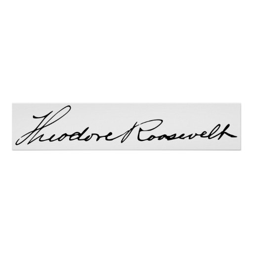 signature of president theodore roosevelt print zazzle