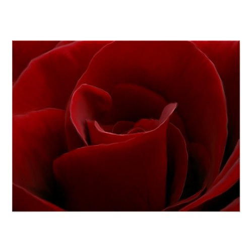 Single Red Rose Print print
