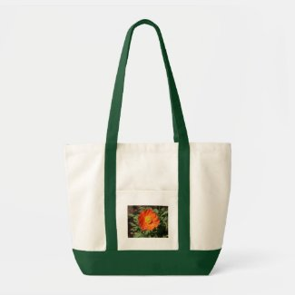 Small Orange Poppy Bag bag