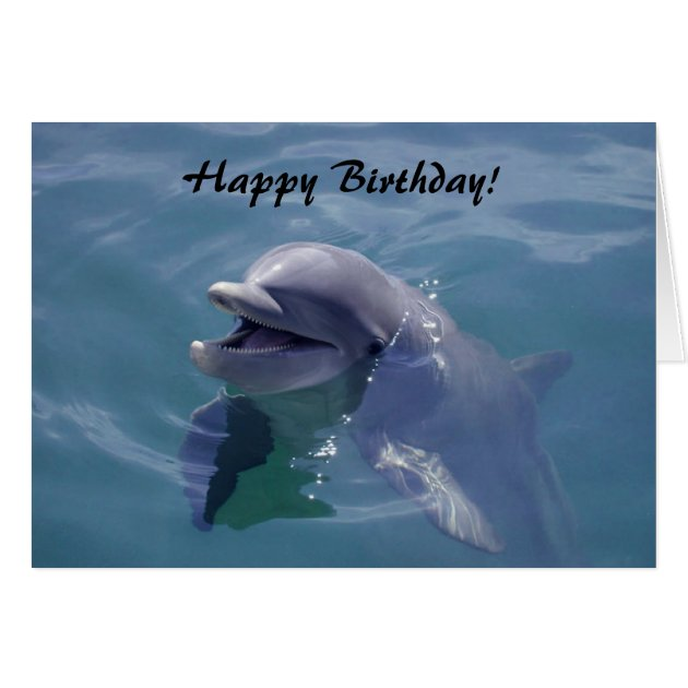 Smiling Dolphin Happy Birthday Card