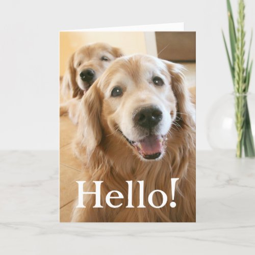 Smiling Golden Retriever Hello Card