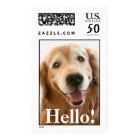 Smiling Golden Retriever Hello Postage