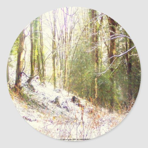 Snowy Sunlit Forest Glade #2 sticker