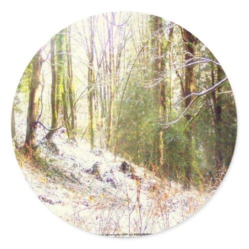 Snowy Sunlit Forest Glade #2 sticker