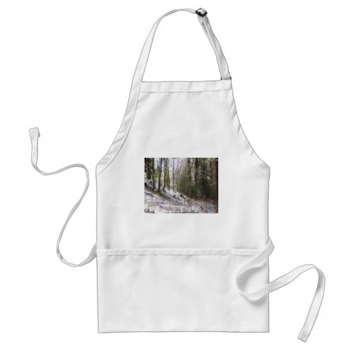 Snowy Sunlit Forest Glade apron