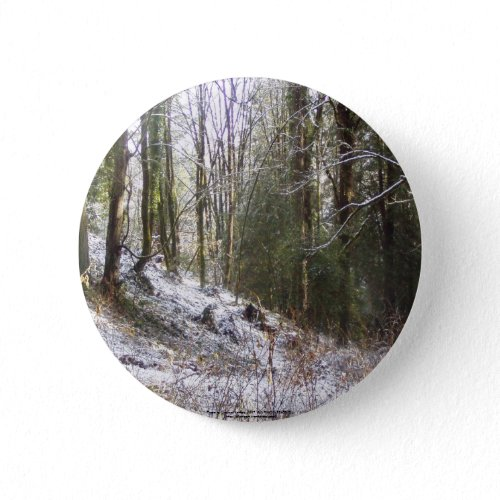 Snowy Sunlit Forest Glade button