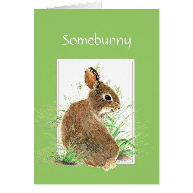 Somebunny Get Well Wishes Cute Rabbit Bunny Card Zazzle