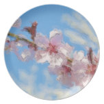 Spring Blossom watercolor plates