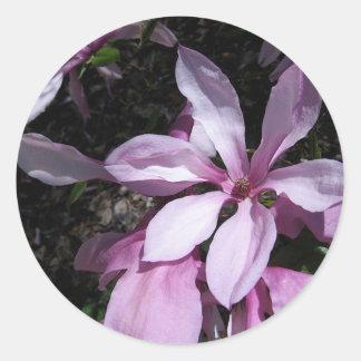 Spring Magnolia Pink Round Sticker