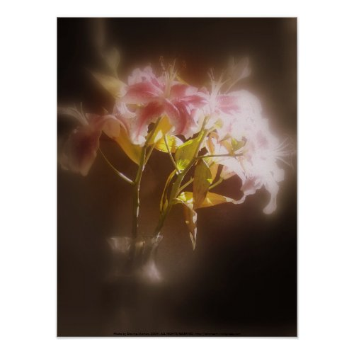 stargazer lilies #32 print