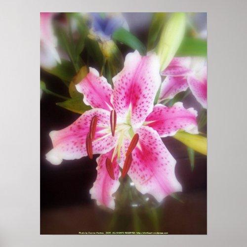 stargazer lilles #2 print