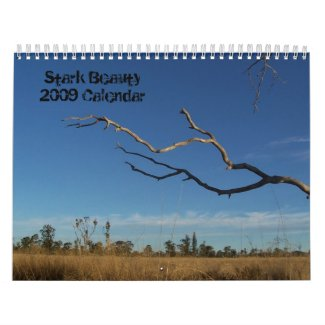 Calendar Sale on Zazzle