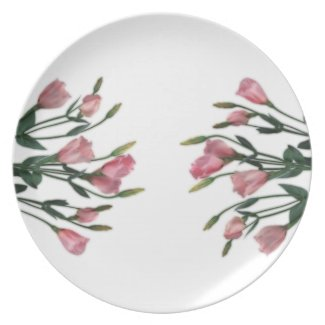 Suddenly Spring plate