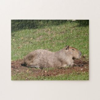 Sunbathing Capybara Puzzle