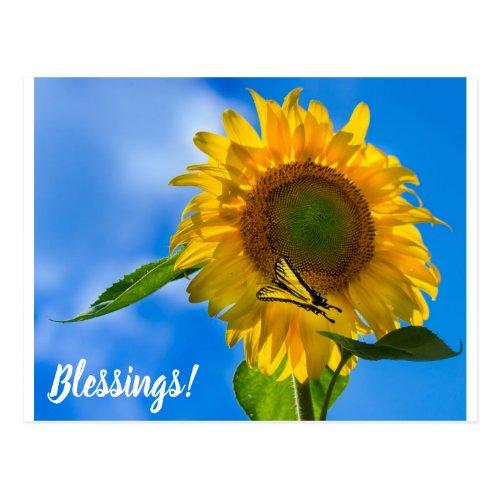 Sunflower & Butterfly Postcard ByWayofKarma