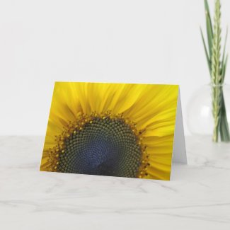 Sunflower Print card