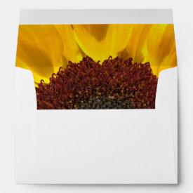 Sunflower Sun Envelope