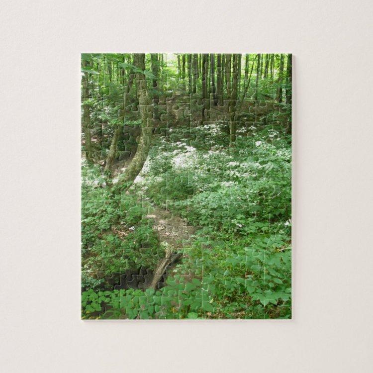 Sunlight Through the Trees - 8 x 10 Puzzle