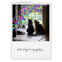 Sympathy, pet loss, rainbow bridge card