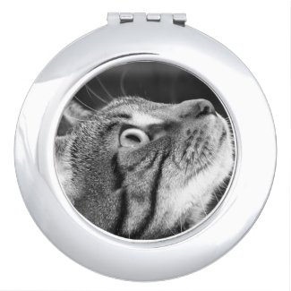 Tabby Cat in Profile Compact Mirror