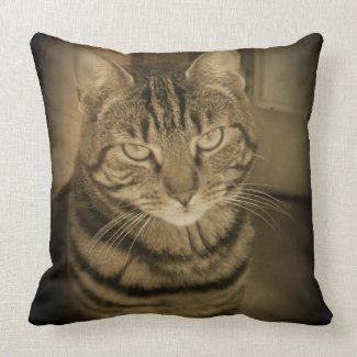 Tabby Cat Sepia Throw Pillow