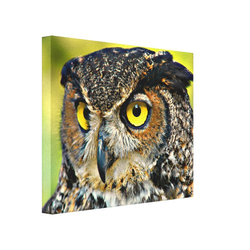 TCWC - Great Horned Owl Canvas Print