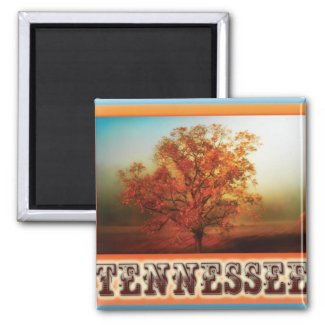 Tennessee Fall Tree Scene Magnets