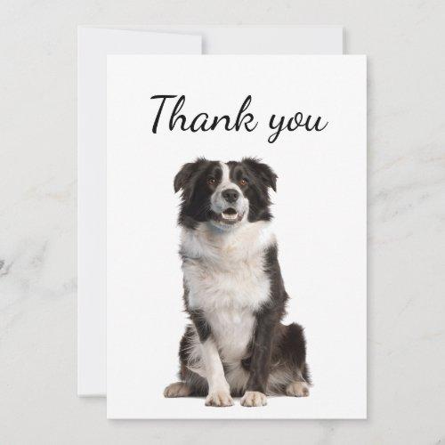 Thank You Border Collie Dog Pet Animal