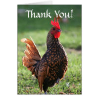 Thank You, Rooster Card