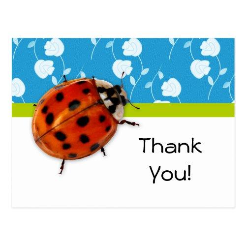 Thank You Trendy Blue Floral Ladybug Postcard