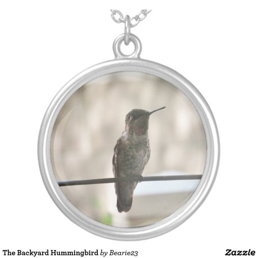 The Backyard Hummingbird Silver Plated Necklace