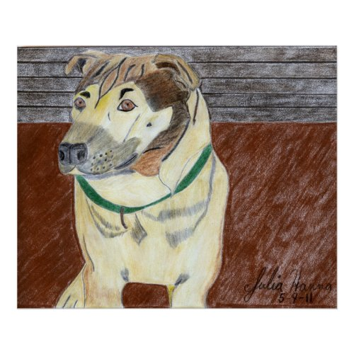 The Buster Drawing by Julia Hanna print