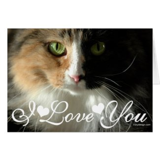 The Cat's Eyes Photo Image I Love You Cards
